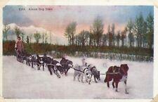 Alaska  Dog Team C143 AK Postcard Eskimo