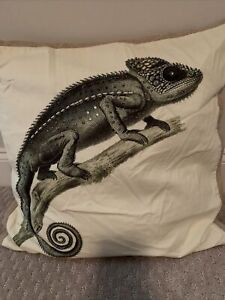 Pottery barn Luxe chameleon pillow cover~EUC