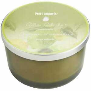BRAND NEW Pier 1 Imports Filled 3-Wick Candle Citrus Cilantro