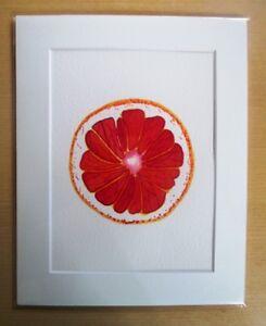 ORIGINAL ART - Pink Grapefruit slice watercolour with mat board