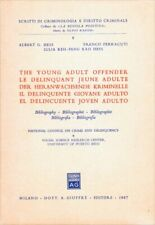 The Young Adult Offender: Bibliography