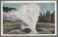 [52304] 1915 POSTCARD RIVERSIDE GEYSER IN YELLOWSTONE PARK (HAYNES, ST. PAUL)