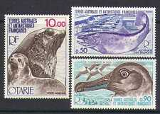 Fsat/TAAF 1977 Pescado/Pájaro/sellos/vida salvaje 3v Set (n23589)