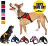 No Pull Adjustable Dog Pet Vest Harness Quality Nylon XS S M L XL XXL Extra Larg