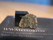 Martian Meteorite NWA 13369 - Poikilitic Shergottite (Peridotitic)
