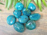 2 Chrysocolla Tumbled Stones Blue Crystal Therapy Gemstone Specimen Reiki