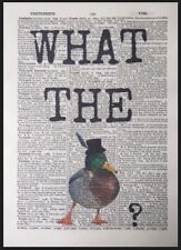 Duck Quote Vintage Dictionary Page Print Wall Art Picture Animal Funny Bird Pun