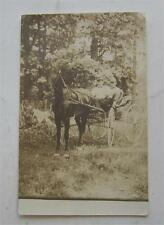 HORSE DRAWN BUGGY 1918 REAL PHOTO RPPC POSTCARD