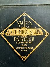 Yaggy's Anatomical Study 1915 Very Rare Antique Educational Portfolio w/ Charts
