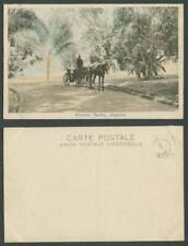 More details for singapore old hand tinted postcard botanical garden horse cart driver palm trees