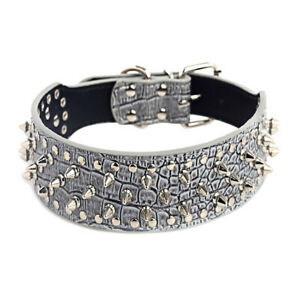 LAVENDER Metal Spiked Studded Leather Dog Collar Pit Bull Rivet L XL Large Breed