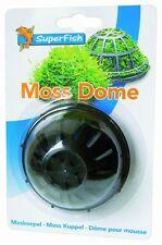 SuperFish Moss Kuppel, Pflanzkissen für dekorative Moospolster