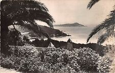 BR10554 Hyeres les palmiers giens Ribaud    france
