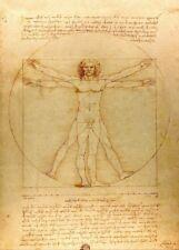 """LEONARDO da VINCI """"Vitruve Luc Viato"""" Anatomy 250gsm Reproduction A3 Poster"""