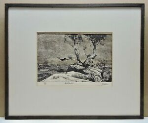 Peter Paone Framed Etching Wasteland Signed And No. 35 of 40 In Pencil