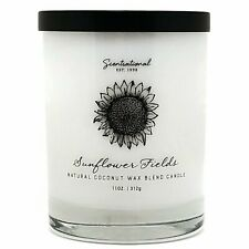 Scentsational Coconut Wax Blend 11oz Single Wick Medium Candle -Sunflower Fields