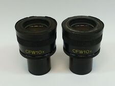 Pair Nikon CFW10X Microscope Eyepieces; clean optics