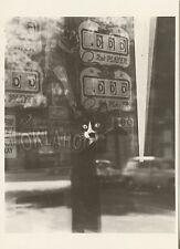 POSTCARD / CARTE POSTALE PHOTO IZIS VITRINE D'UN CAFE PARIS 1976 / CAT CHAT
