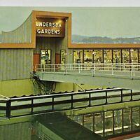 Vintage Undersea Gardens Oregon Newport Yaquina Bay Blvd Building OR Postcard