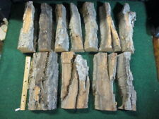"Bulk 11Pc 16Lb 2.5-3.5""Thick Cottonwood Bark Carving Whittling Wood Crafts-Cb351"