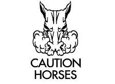 HORSE FLOAT DECAL LARGE * CAUTION HORSES* Trailer Stud Stallion Sticker Truck