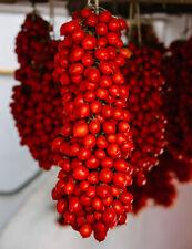 Pomodoro Piennolo del Vesuvio - 10 semi + 2 in omaggio (semi DOP dal Vesuvio)