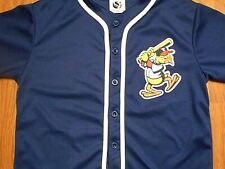 Vintage Toledo Mud Hens BUTTON UP Baseball Jersey, Youth XL, NICE!!!