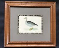 "15""x 13.5"" Birdseye Maple Frame - Grey-Lac Goose by Rev. Morris"