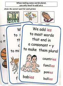 FROM SINGULAR TO PLURAL – Y2/3 SPAG Pack