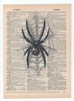 Black Widow Spider Dictionary art book print Poster Vintage Wall Decor A023