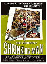 THE INCREDIBLE SHRINKING MAN LOBBY CARD POSTER OS 1957 GRANT WILLIAMS