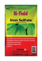Water Soluble Iron Sulfate Powder 140g