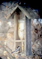 Bird Feeder Wine Bottle Rustic Weathered Wood Usa Handmade