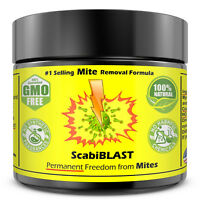 Scabies Treatment Cream Lotion Medication Natural Ointment Permanent Relief FAST