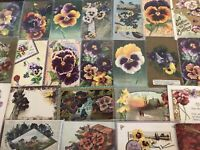 Nice~LOT of 25 ~Pansies~PANSY~Flowers Floral~Greetings Postcards-In Sleeves-s985