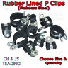 Stainless Steel Rubber Lined P Clips Wiring Hose Clamp Pipe Cable P Clip Metal