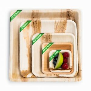 Disposable Square Palm Leaf Plates - Bamboo Catering Eco Natural Dinner Party