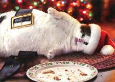 Santa Cat With Cookies Funny Christmas Card Avanti Greeting Card SET OF 4 CARDS
