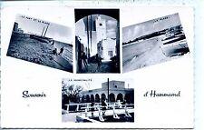 CP Tunisie - Souvenir d'Hammamet - Multivues n&b - b