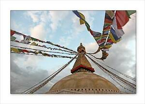 "LARGE 25 7""x6"" Tibetan Buddhist Prayer Flag Wind Horse Om Handmade FAIRTRADE"