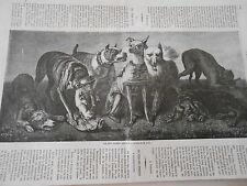 Gravure 1864 - Les Sept pêchés capitaux ( les chiens )