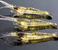 3 Pcs Kinds of Fishing Lures Crankbaits Hooks Minnow Shrimp Baits Tackle