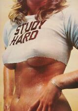 Study Hard 1979 VINTAGE POSTER - SEALED IN ORIGINAL SLEEVE UNOPENED NEW!
