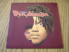 "PM DAWN - REALITY USED TO BE A FRIEND OF MINE   7"" VINYL PS"