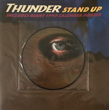 """THUNDER - Stand Up (7"""") (Picture Disc) (EX/EX-)"""