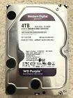WD+WESTERN+DIGITAL+4TB+Purple+Surveillance+Internal+Hard+Disk+Drive+%3C2%2C500+POH