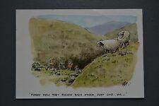 R&L Postcard: Modern, Besley, Sheep Hill Walkers Ramblers Rambling