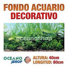 FONDO 80x40cm ACUARIO DECORATIVO VINILO PLANTAS MARINAS CALIDAD D429