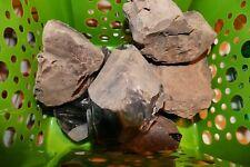 Obsidian Eastern Oregon/Owhyee: 6lbs rocks: slabs,knives/arrow heads