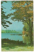 LAKE and  MT. SUNAPEE New Hampshire NH Postcard Water Trees, Dock 1950
